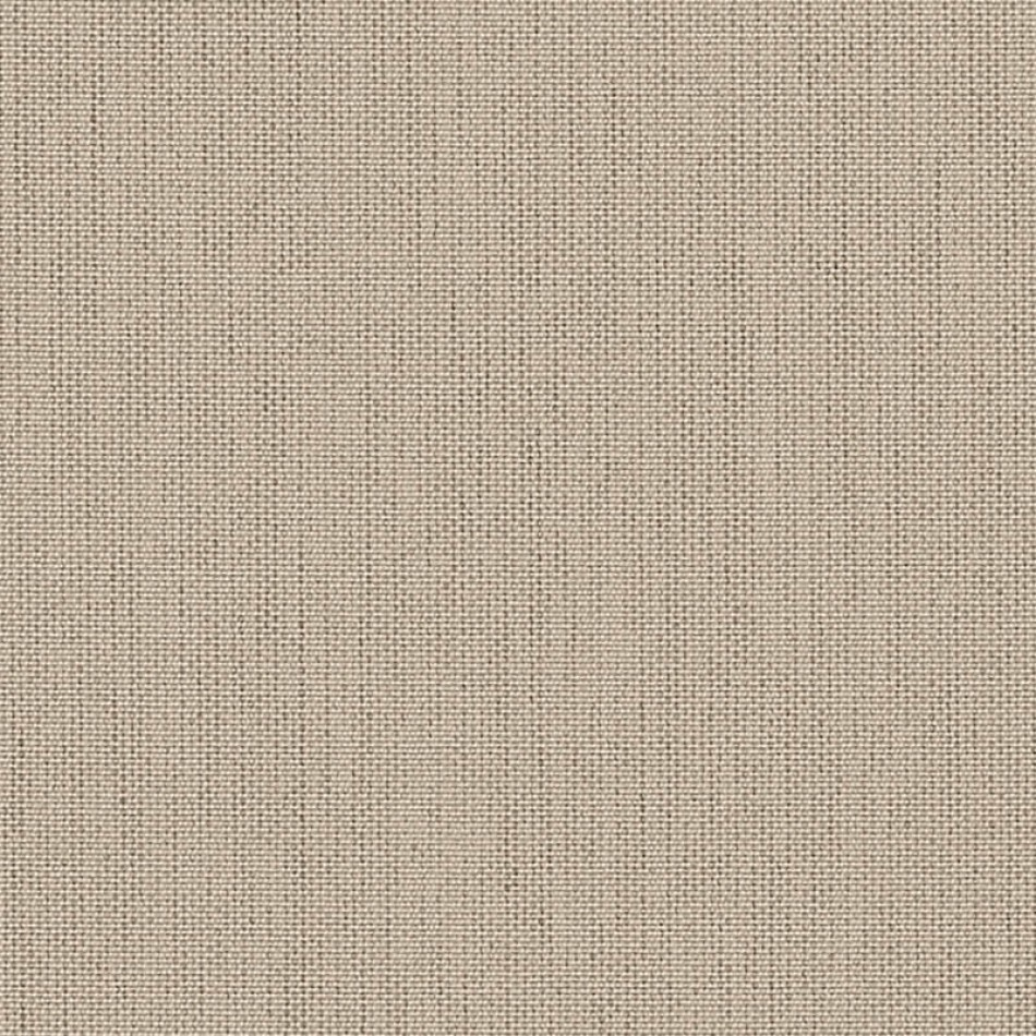 Papyrus P055