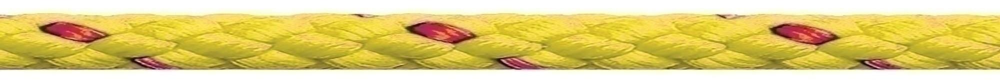 Waterskilijn geel Robline